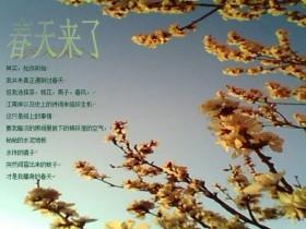 春天的句子