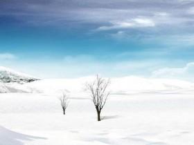 描写雪的语句