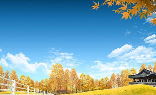 描写秋天的句子有哪些